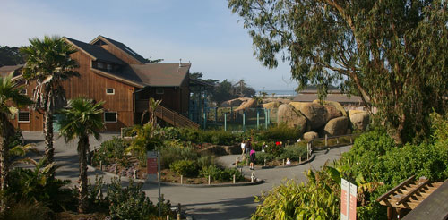 Thereu0027s A Lot To See In This Urban Oasis Nestled Against The Pacific Ocean.  Come See Over 2,000 Exotic, Endangered, And Rescued Animals And Majestic,  ...